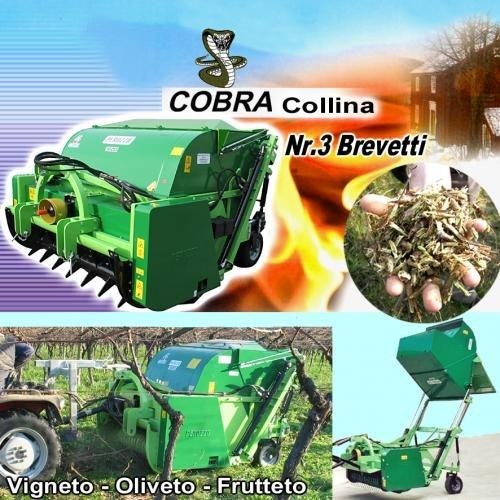 , Biomass Shredder COBRA Collina, Peruzzo