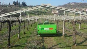 TRINCIAERBA/SARMENTI CANGURO | Peruzzo.it